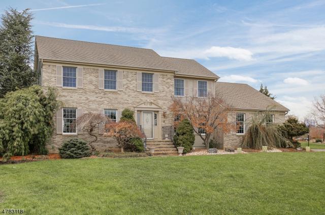 2 Mcmannus Dr, Hillsborough Twp., NJ 08844 (MLS #3451233) :: SR Real Estate Group
