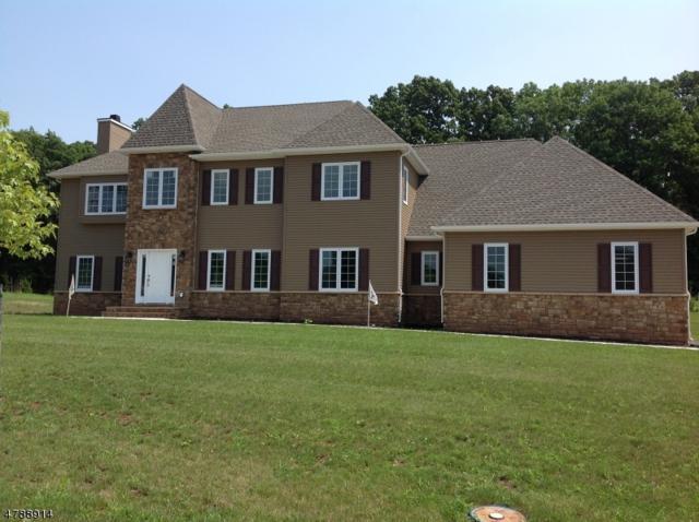 9 Fawn Run, Ln, Branchburg Twp., NJ 08876 (MLS #3456489) :: SR Real Estate Group