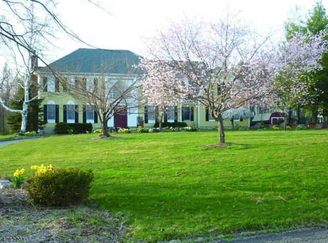 17 Uptom Pine Rd, Tewksbury Twp., NJ 08833 (MLS #3457399) :: SR Real Estate Group