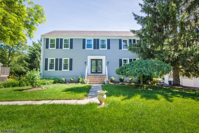 155 Cottage Pl W, Long Hill Twp., NJ 07933 (MLS #3463264) :: The Sue Adler Team