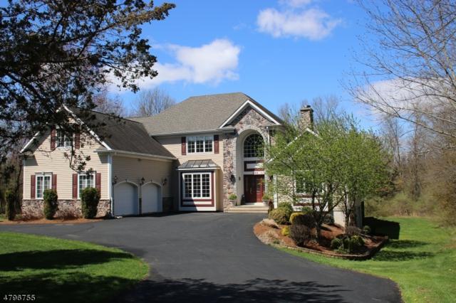 248 Stonehouse Rd, Bernards Twp., NJ 07920 (MLS #3465692) :: The Sue Adler Team