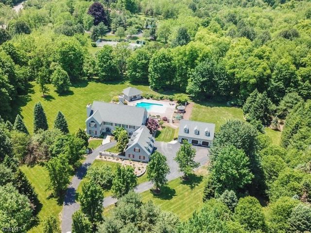 29 Pequest Rd, Green Twp., NJ 07821 (MLS #3466993) :: William Raveis Baer & McIntosh