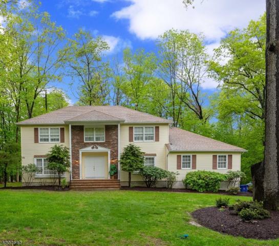 3 Exeter Way, Roxbury Twp., NJ 07876 (MLS #3471972) :: The Dekanski Home Selling Team