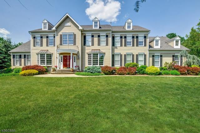 20 Squire Ct, Bernards Twp., NJ 07920 (MLS #3473976) :: The Dekanski Home Selling Team