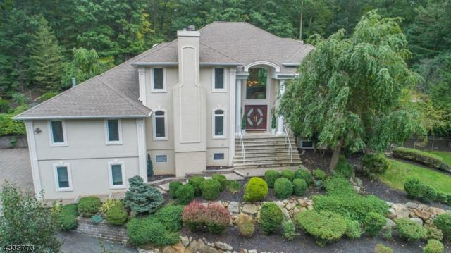 14 High Mountain Dr, Montville Twp., NJ 07045 (MLS #3503877) :: REMAX Platinum