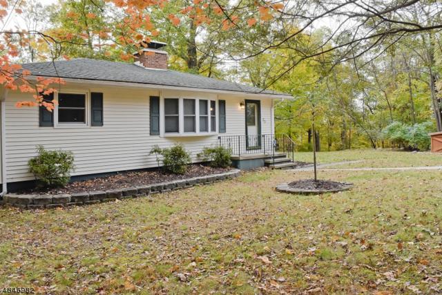20 Hemlock Rd, Byram Twp., NJ 07821 (MLS #3510566) :: Coldwell Banker Residential Brokerage