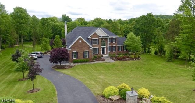 15 High Ridge Ln, Frankford Twp., NJ 07822 (MLS #3528983) :: William Raveis Baer & McIntosh