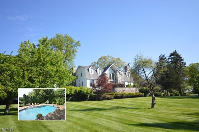 4 Fox Ridge Rd, Sparta Twp., NJ 07871 (MLS #3538728) :: Coldwell Banker Residential Brokerage