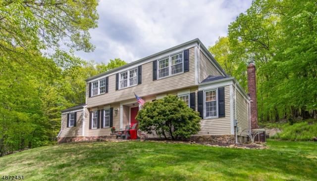 6 Tall Timber Dr, Washington Twp., NJ 07853 (MLS #3539952) :: Coldwell Banker Residential Brokerage