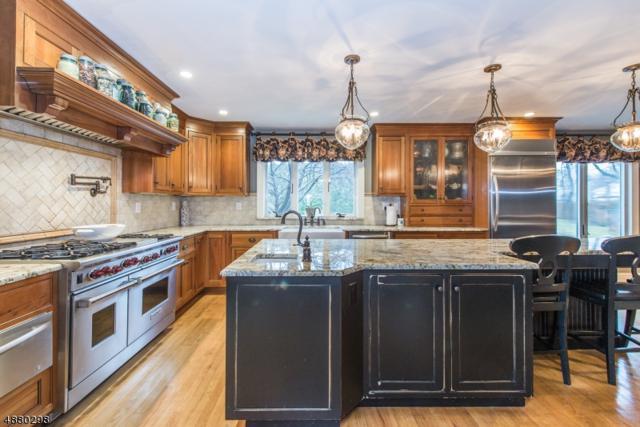 101 S Hillside Ave, Roxbury Twp., NJ 07876 (MLS #3541043) :: The Dekanski Home Selling Team