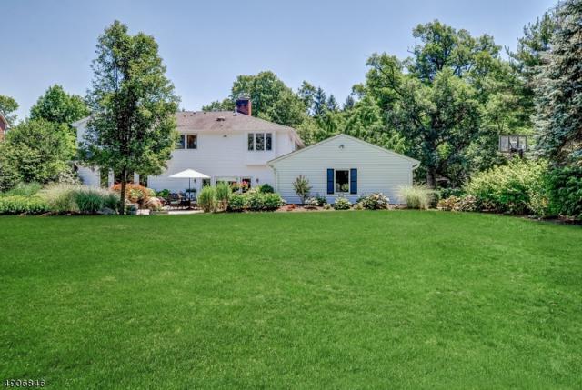 354 Hartshorn Dr, Millburn Twp., NJ 07078 (MLS #3565545) :: SR Real Estate Group