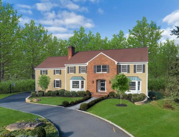 19 Shadowbrook Ct, Bernardsville Boro, NJ 07924 (MLS #3578428) :: REMAX Platinum