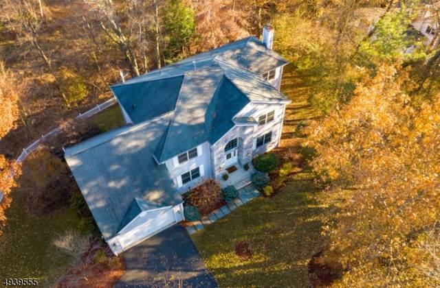729 Mary Ann Pl, Ridgewood Village, NJ 07450 (MLS #3595744) :: Coldwell Banker Residential Brokerage