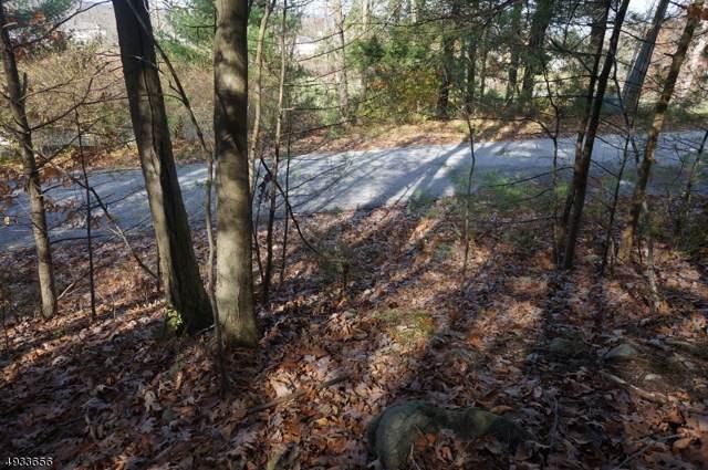 135 Hemlock Hill, Montague Twp., NJ 07827 (MLS #3599551) :: William Raveis Baer & McIntosh