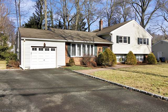 12 Whitney Dr, Berkeley Heights Twp., NJ 07922 (MLS #3608849) :: REMAX Platinum