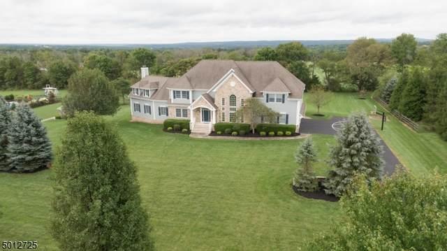 7 Hemingway Dr, Alexandria Twp., NJ 08848 (MLS #3661190) :: Team Braconi | Christie's International Real Estate | Northern New Jersey