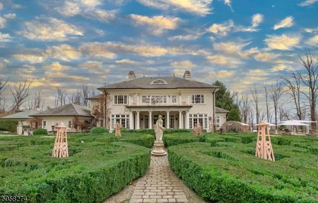 110 Village Rd, Harding Twp., NJ 07976 (#3701645) :: NJJoe Group at Keller Williams Park Views Realty