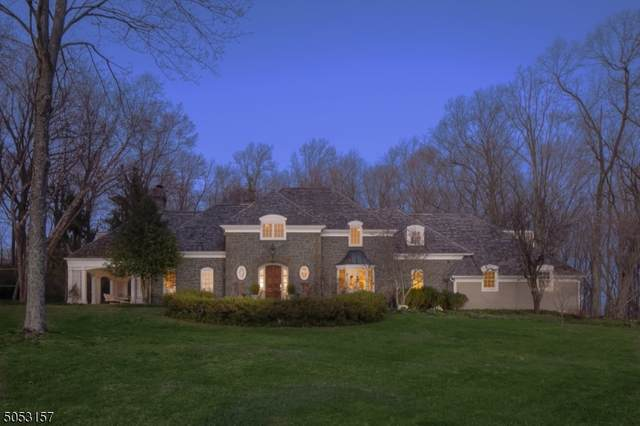 30 Cold Spring Road, Tewksbury Twp., NJ 07830 (#3705048) :: Rowack Real Estate Team