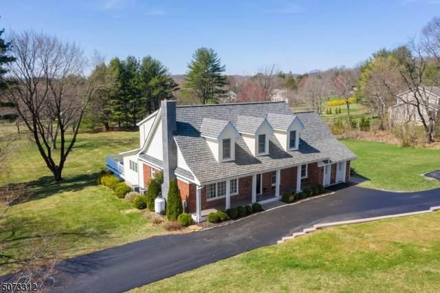 778 County Road 579, Alexandria Twp., NJ 08867 (MLS #3713968) :: Stonybrook Realty