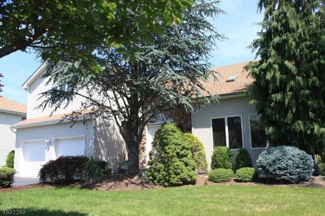 21 Jade Meadow Dr, Springfield Twp., NJ 07081 (MLS #3377147) :: The Dekanski Home Selling Team