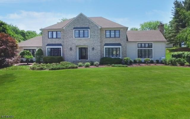 59 Country Acres Dr, Union Twp., NJ 08827 (MLS #3392319) :: The Dekanski Home Selling Team
