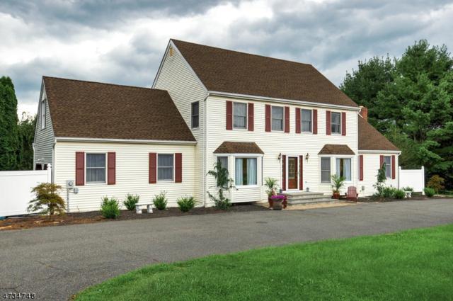 502 Horizon Way, Branchburg Twp., NJ 08853 (MLS #3410339) :: The Dekanski Home Selling Team