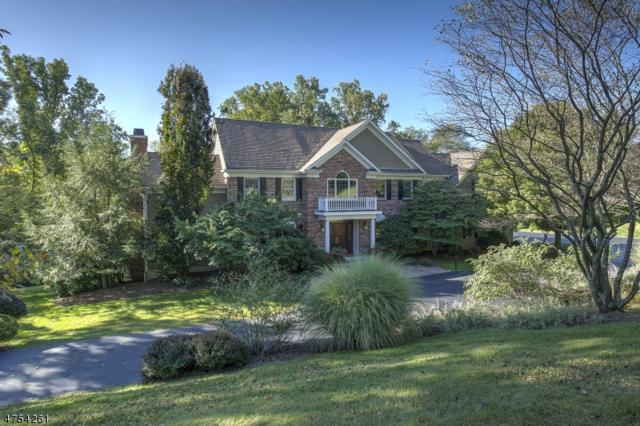 9 Pond View Rd, Chester Twp., NJ 07930 (MLS #3426525) :: SR Real Estate Group