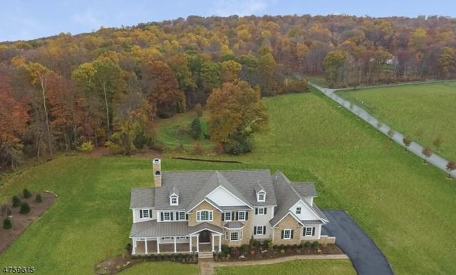 224 Mountain Rd, Bernards Twp., NJ 07920 (MLS #3430323) :: SR Real Estate Group