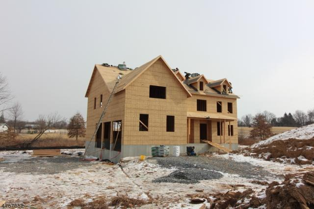 2 Cirrus Ln., Alexandria Twp., NJ 08867 (MLS #3433560) :: SR Real Estate Group