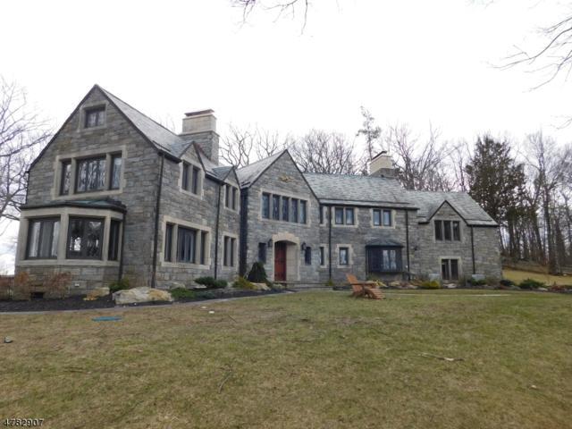 396 Ski Trl, Kinnelon Boro, NJ 07405 (MLS #3451962) :: SR Real Estate Group