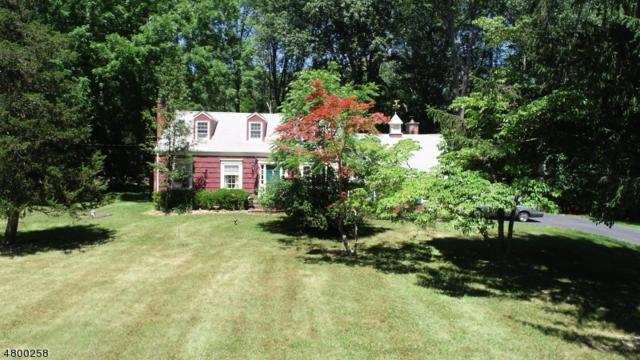 5 Northlea Drive, Rockaway Twp., NJ 07005 (MLS #3466999) :: William Raveis Baer & McIntosh