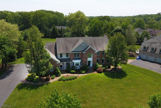53 Quail Run, Randolph Twp., NJ 07869 (MLS #3473080) :: The Douglas Tucker Real Estate Team LLC