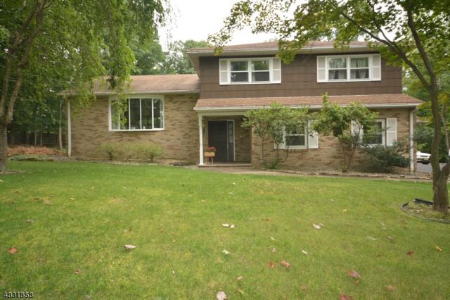 11 Conklin Ln, Warren Twp., NJ 07059 (MLS #3496581) :: SR Real Estate Group