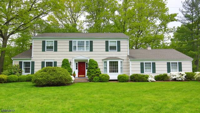 69 Hampton Rd, Chatham Twp., NJ 07928 (MLS #3546190) :: The Debbie Woerner Team