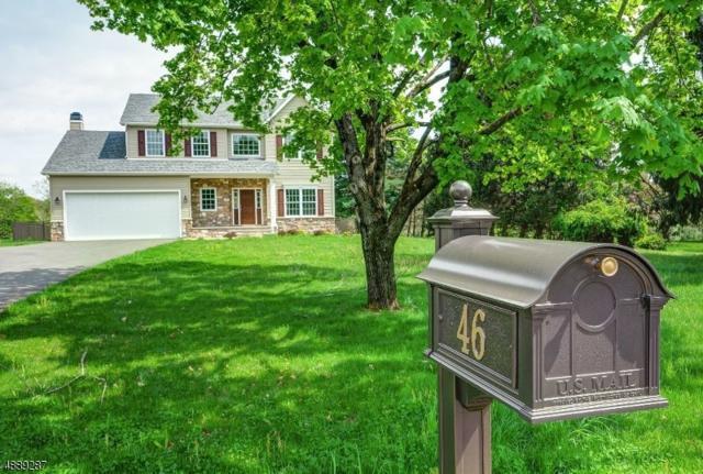 46 Everittstown Rd, Frenchtown Boro, NJ 08825 (MLS #3550357) :: SR Real Estate Group