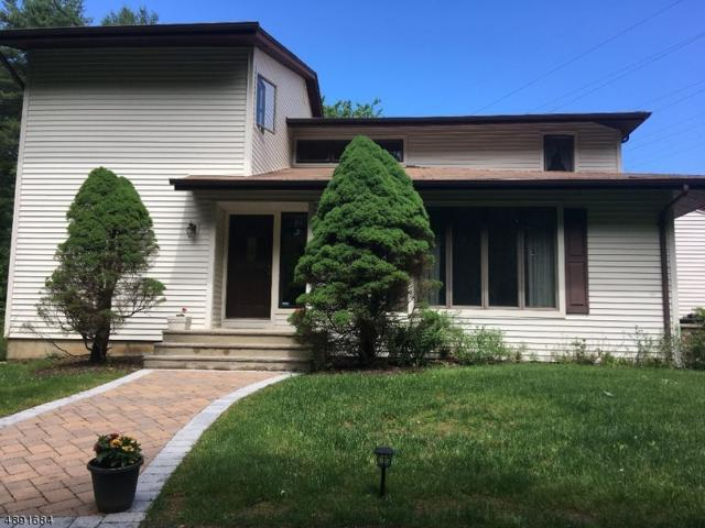 19 Openaki Rd, Randolph Twp., NJ 07869 (MLS #3555003) :: REMAX Platinum