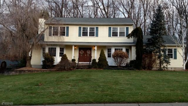 11 Heather Ct, Rockaway Twp., NJ 07801 (MLS #3436045) :: SR Real Estate Group