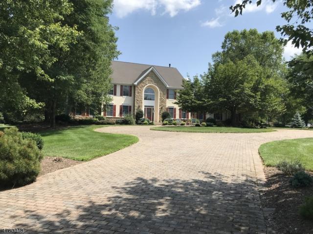 1 Pond View Court, Readington Twp., NJ 08889 (MLS #3452630) :: SR Real Estate Group