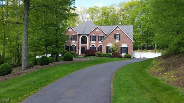 25 Crystal Rock Rd, Sparta Twp., NJ 07871 (MLS #3547464) :: Weichert Realtors