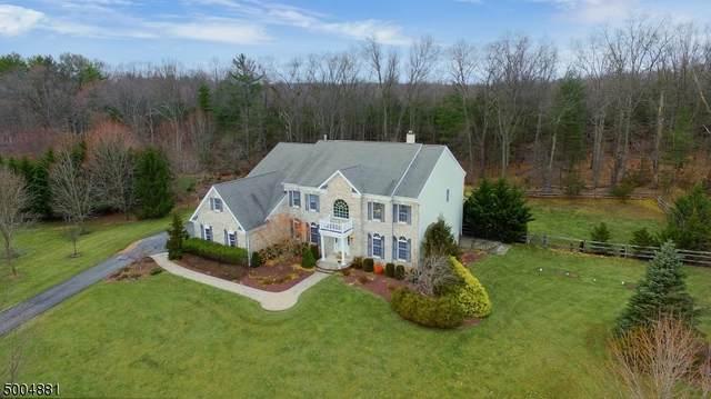 68 Fox Chase Ln, Montgomery Twp., NJ 08502 (MLS #3653668) :: Team Francesco/Christie's International Real Estate