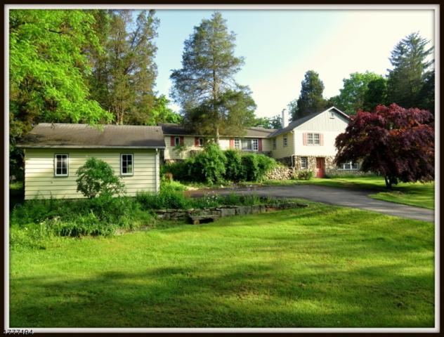 908 West Walnut Drive, Stillwater Twp., NJ 07860 (MLS #3446246) :: William Raveis Baer & McIntosh