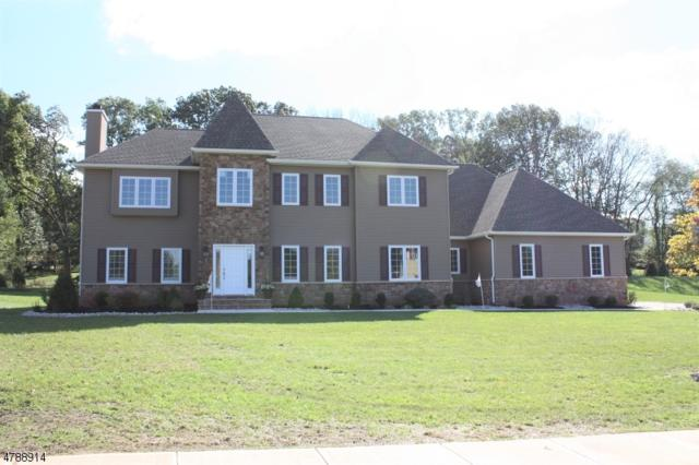 9 Fawn Run, Ln, Branchburg Twp., NJ 08876 (MLS #3456489) :: The Sue Adler Team