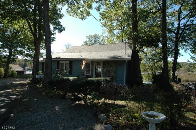 12 Strawberry Pt Dr, Byram Twp., NJ 07821 (MLS #3401555) :: The Dekanski Home Selling Team