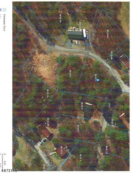283 Old Chimney Ridge Rd, Montague Twp., NJ 07827 (MLS #3350551) :: The Dekanski Home Selling Team