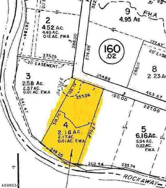 1 Barnet, Montville Twp., NJ 07058 (MLS #3373417) :: The Dekanski Home Selling Team
