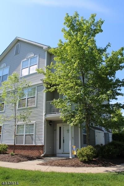 601 Tulsa Ct, Independence Twp., NJ 07840 (MLS #3394399) :: The Dekanski Home Selling Team
