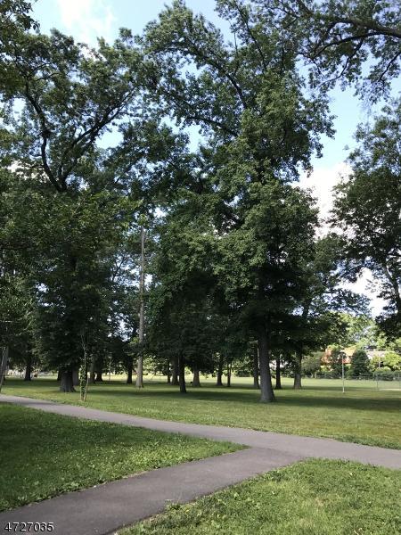 44 Parkway, Boyden, Maplewood Twp., NJ 07040 (MLS #3400028) :: The Sue Adler Team