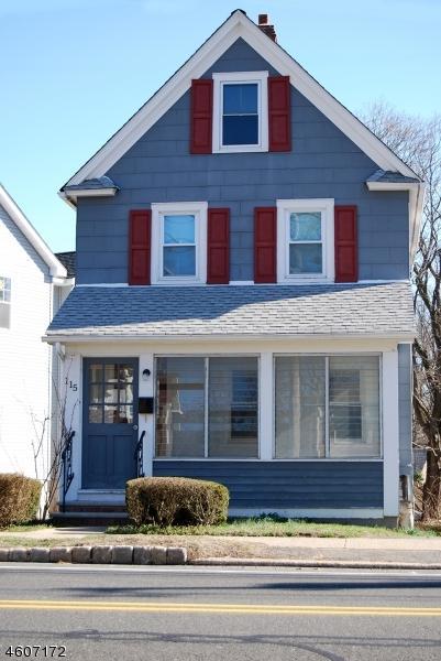115 Park Ave, Madison Boro, NJ 07940 (MLS #3423593) :: The Sue Adler Team
