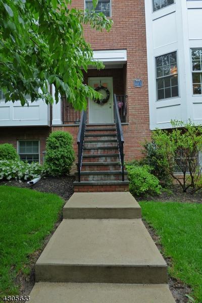 10 Cook Ave, Unit 5 #5, Madison Boro, NJ 07940 (MLS #3472102) :: Zebaida Group at Keller Williams Realty