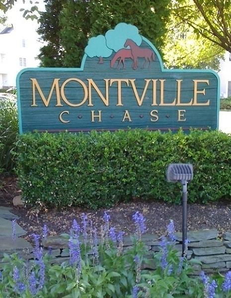 47 Genoble Rd, Montville Twp., NJ 07045 (MLS #3507973) :: SR Real Estate Group